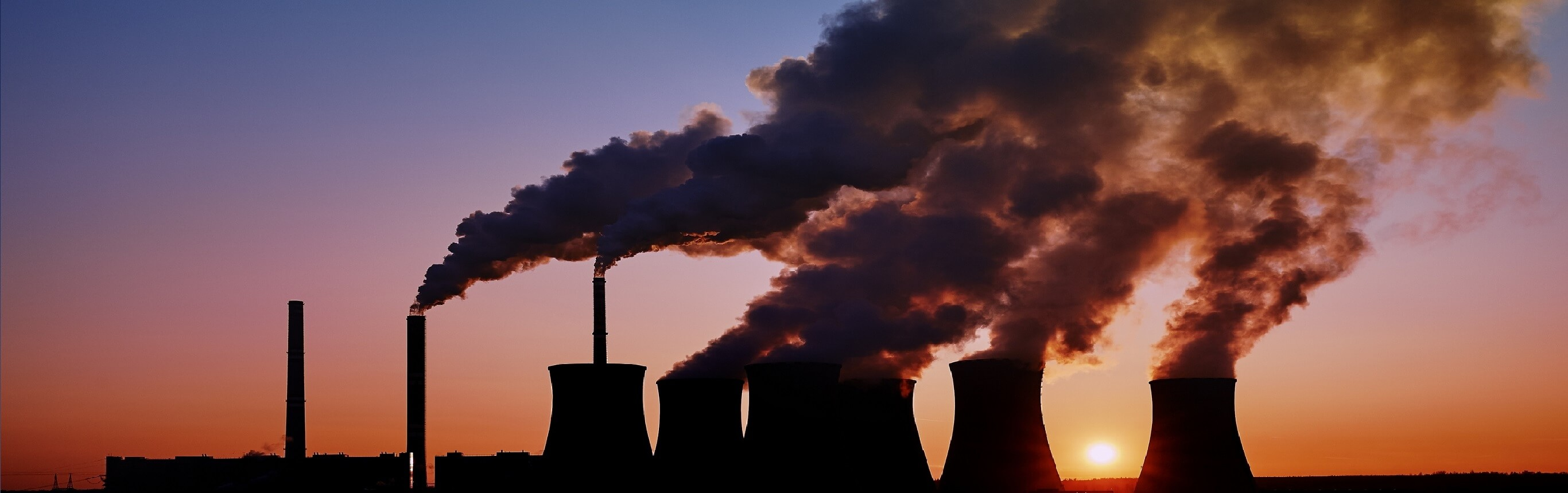 An analysis of our 2019 carbon footprinting reports