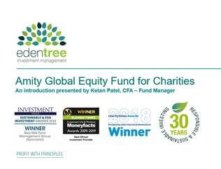 Amity Global Equity Fund for Charities Introduction