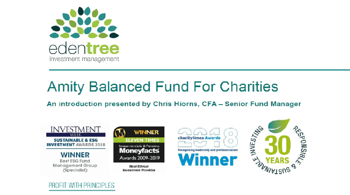 Amity Balanced Fund for Charities Introduction