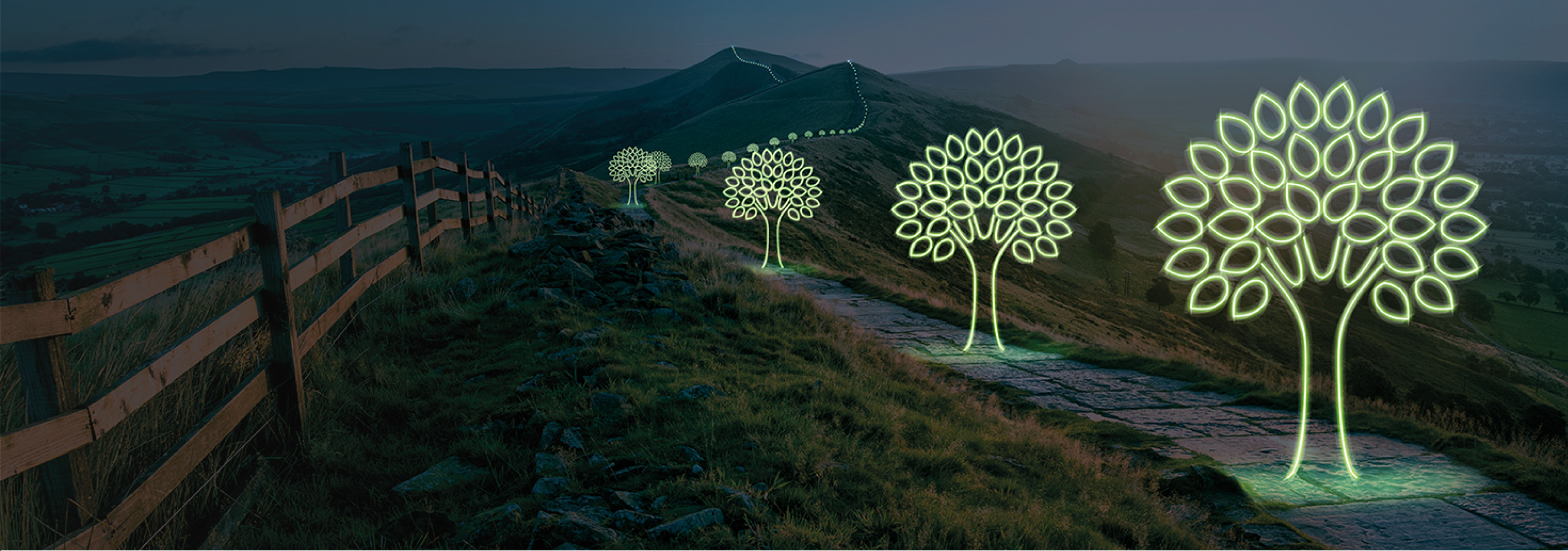Lighting the way in responsible investing for over 30 years